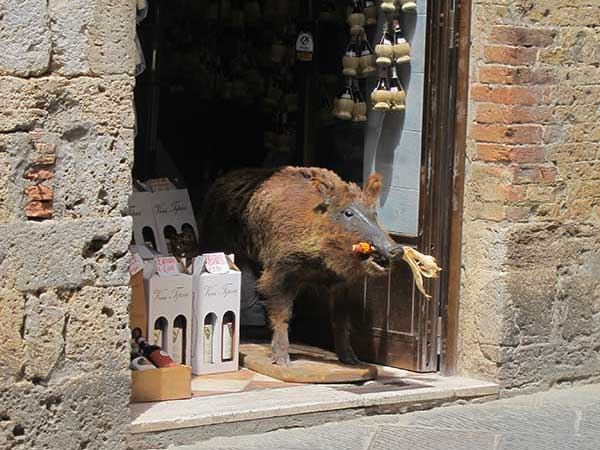 enoteca, San Gimignano