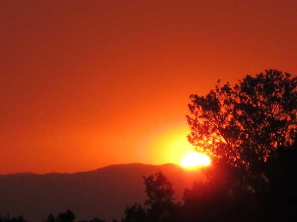 Summer tangerine dream sunset